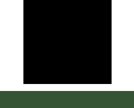 logo zen grids